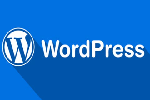 使用WP Downgrade降级WordPress版本的方法